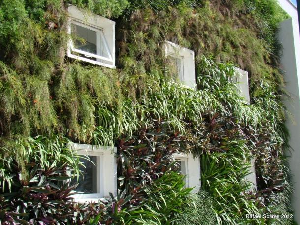 Jardim vertical com garrafas PET – Arte Reciclada